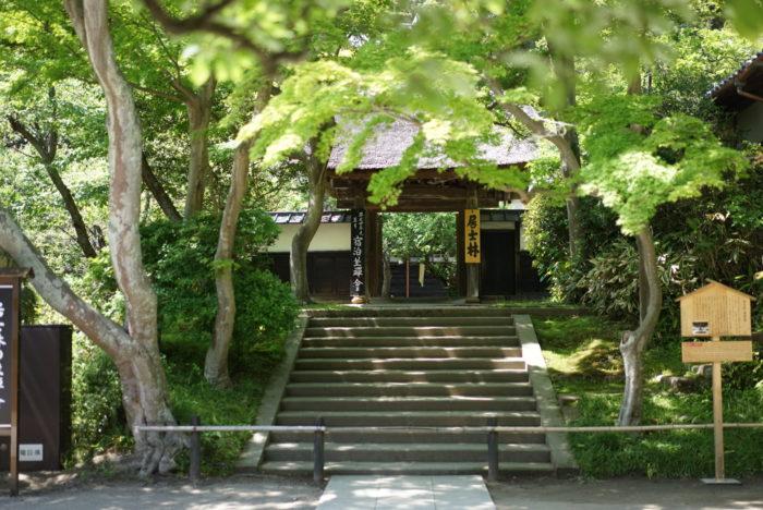 居士林 円覚寺 入り口