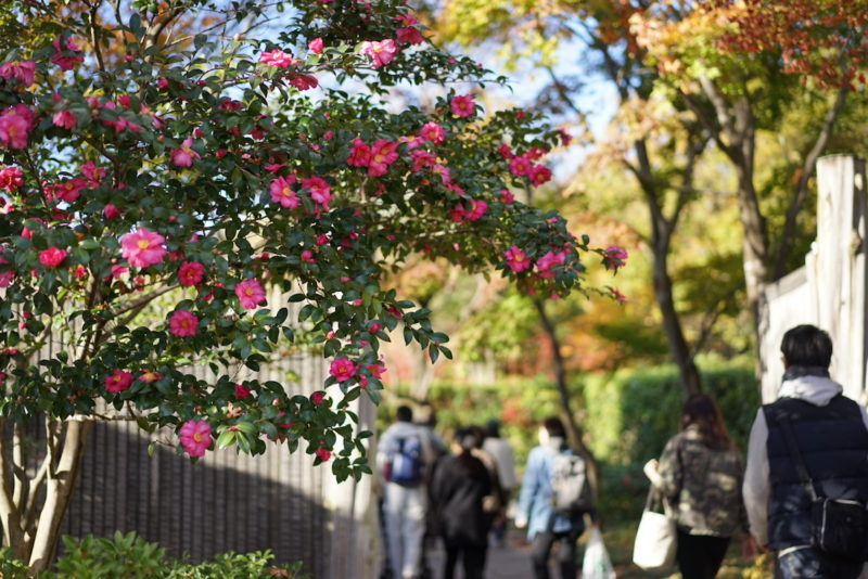 日本庭園入り口 昭和記念公園
