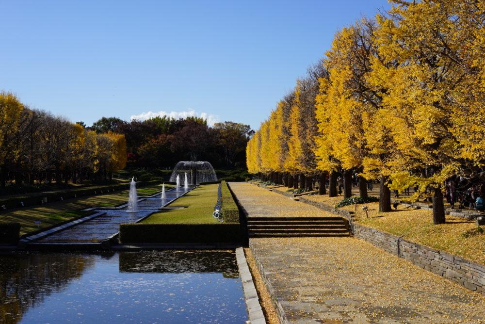 カナール 昭和記念公園