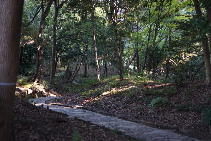 小石川後楽園 道