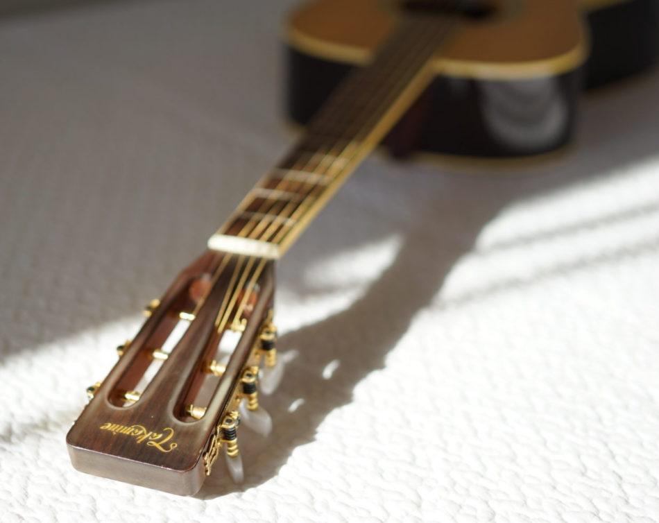 タカミネギター ヘッド