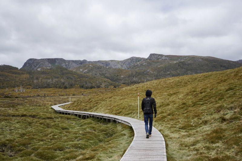 遊歩道を散策 クレイドルマウンテン
