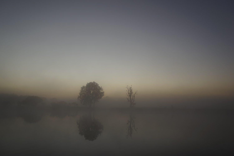 日の出前のイエローウォータークルーズ