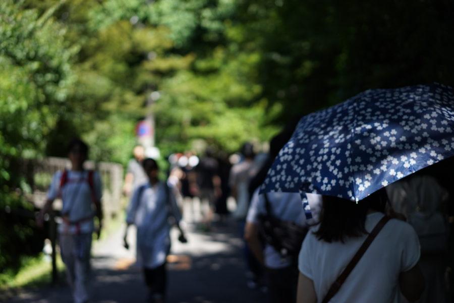 鎌倉明月院 入り口の行列