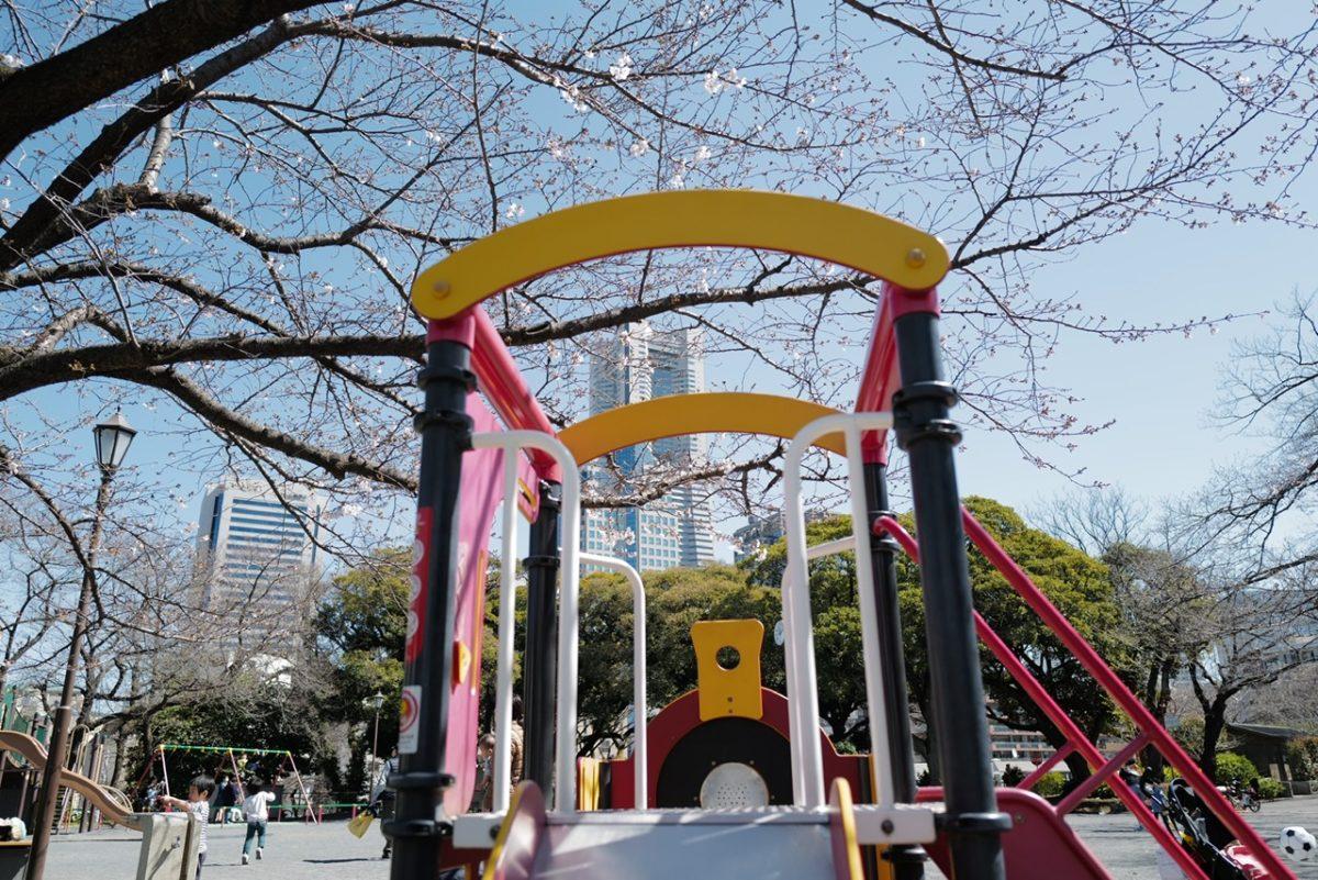 掃部山公園 滑り台と桜とクイーンズタワー