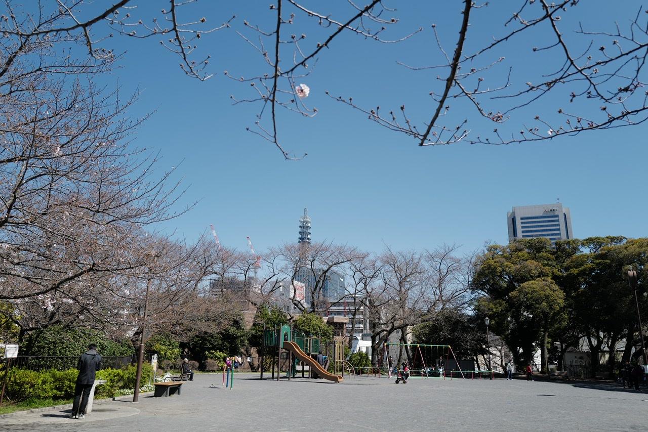 掃部山公園 桜 広場 遊具