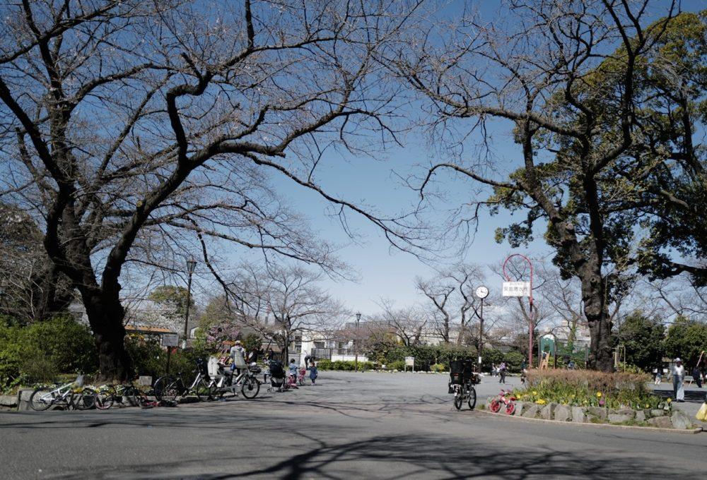掃部山公園 広場入口
