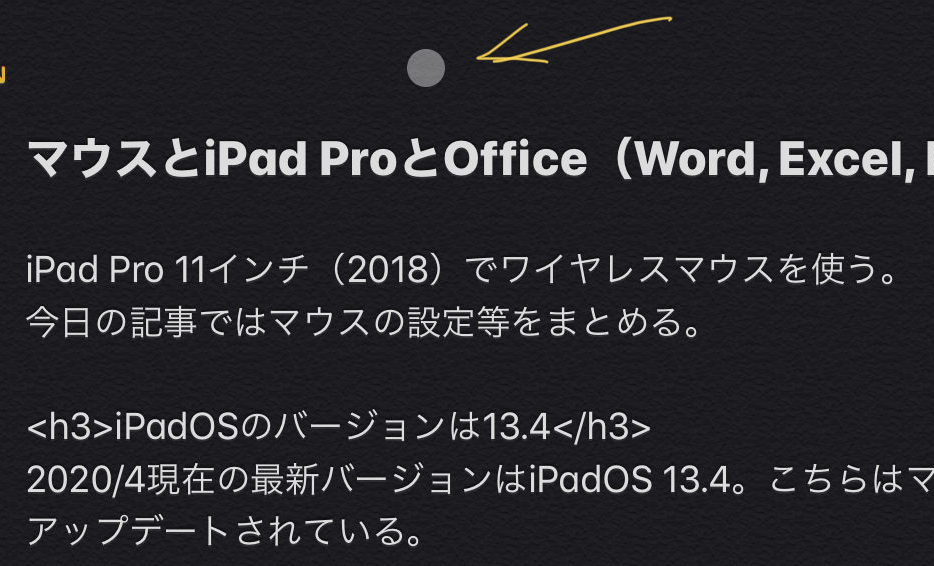 ポインタの形状 iPad Pro