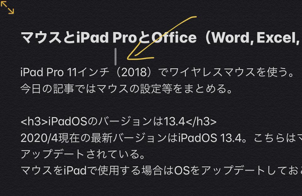 IPad Pro マウス ポインタの形状