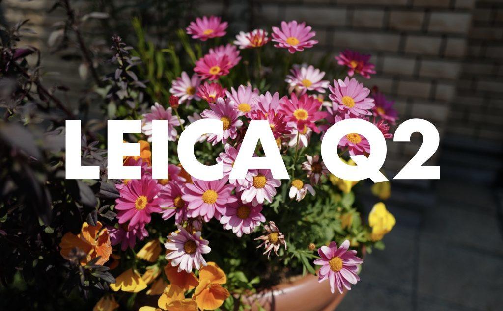 Leica Q2 作例